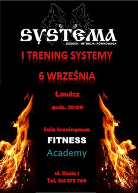 systema łowicz
